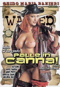 Western porno film
